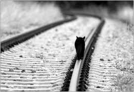 El ruido del tren que se aproximaba lo despertó de aquel estado placentero