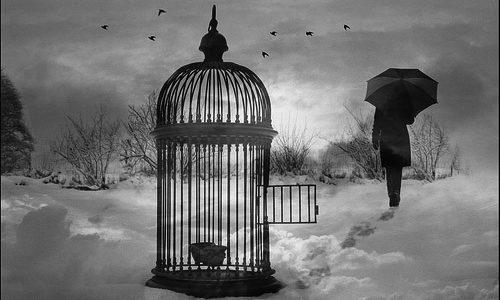 Trastorno obsesivo compulsivo (TOC): la mente prisionera
