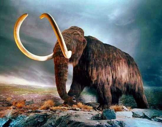 Réplica de mamut