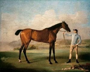 Erickson y la historia del caballo