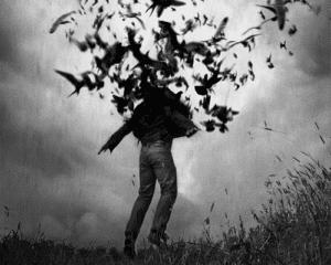 Hombre rodeado de pájaros